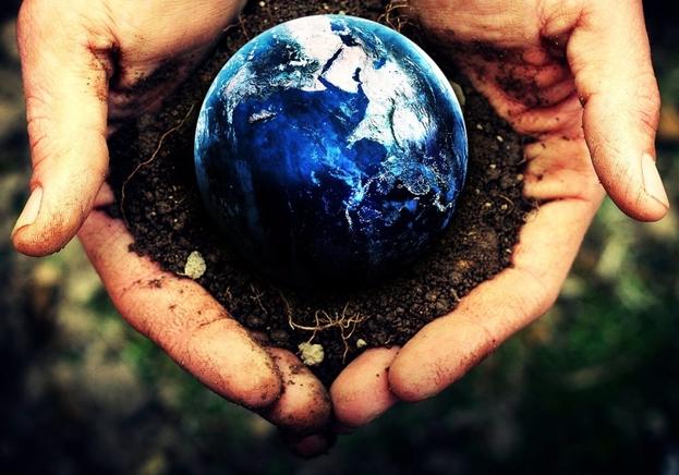 Whole Earth Care