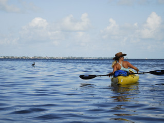 Giving Back to the Bay- Volunteering for the Seagrass Survey