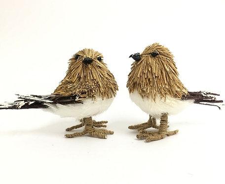 2 x Robin Birds - Standing Ornaments, Australia, Male & Female Pair