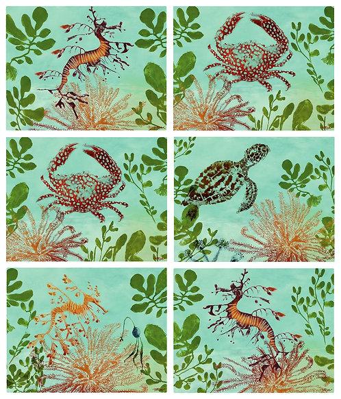 6 Placemats - Australia, Cork - Ocean Depths, Seahorse, Turtle, Crab, Coral
