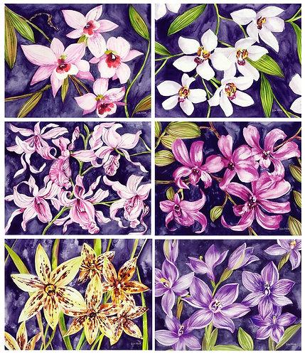 6 Placemats + 6 Coasters - Australia, Cork - Orchid Garden,Flowers,Helen Ashley