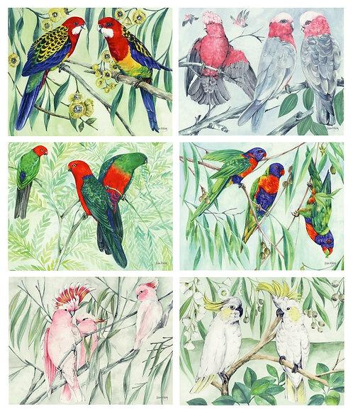 6 PLACEMATS + 6 COASTERS SET- AUSTRALIAN CINNAMON - PARROTS, BIRDS, HELEN ASHLEY