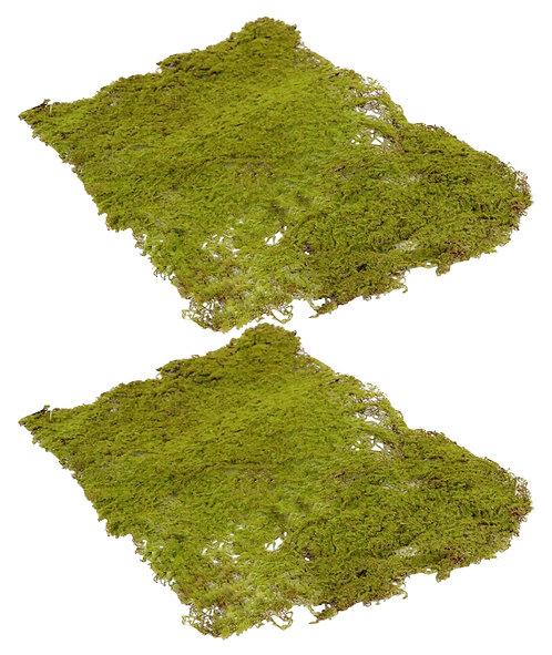 2 x Wired Artificial Moss Mats, 40x30cm -Fake,Terrarium,Fairy Garden,Wreath,Wall