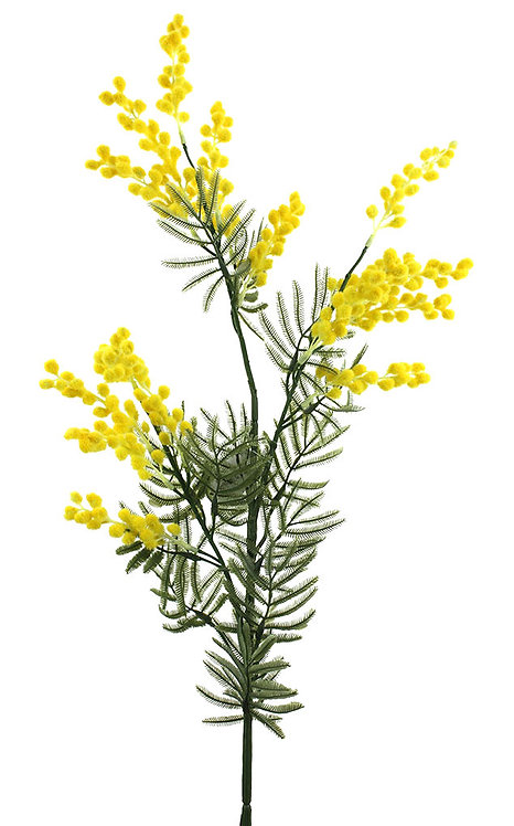 3 x WATTLE, MIMOSA PICKS SPRAYS BUSH (88cm) - ARTIFICIAL, FAKE, DIY CRAFT, DECOR