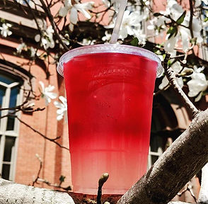Rain or shine, it's hibiscus limeade tim
