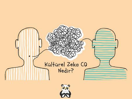 Kültürel Zeka (CQ) Nedir?