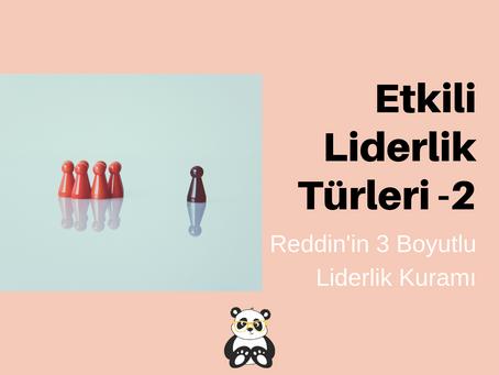 Liderlik Tarzları 2- Reddin'in 3 Boyutlu Liderlik Kuramı