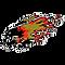 chaparral-firebirds-ebf40c.png