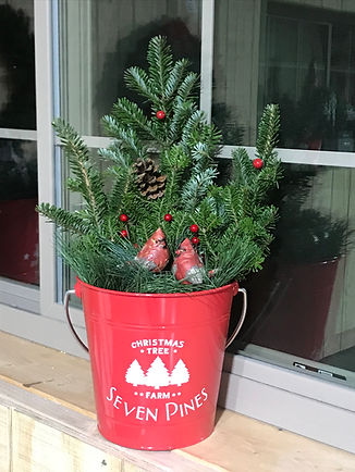 christmas tree porch pot