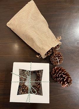 pine cone fire starter.jpg