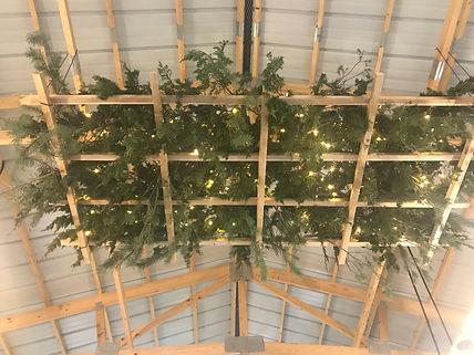 seven pines christmas tree