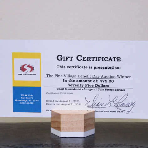 Gift Certificate to Cole Street Services