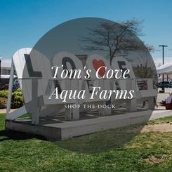 Tom's Cove Aqua Farms