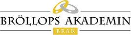 bkpam25320_braklogorgb.jpg