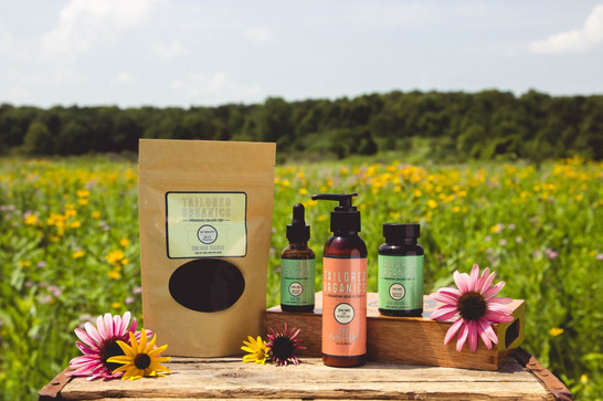 CBD products on display in a summer field