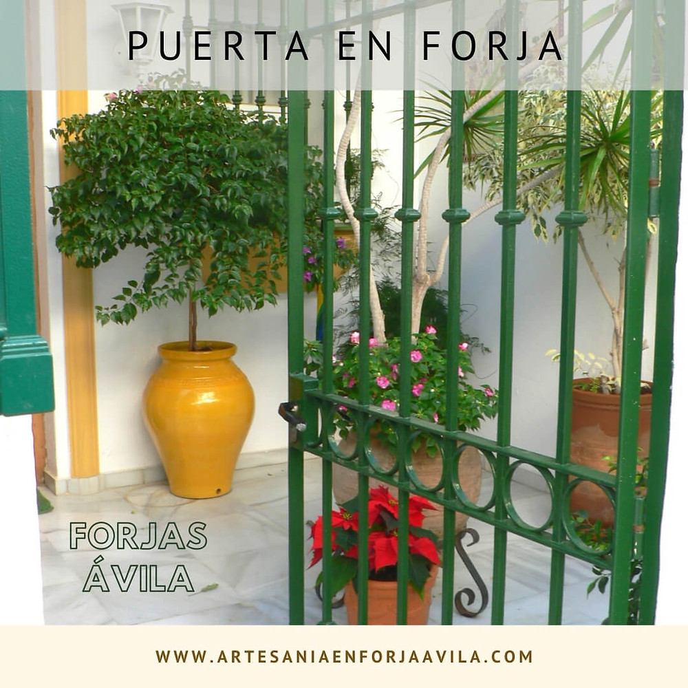 Reja para Puerta en Forja Trujillo
