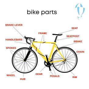 Bike Parts 🚴♀️