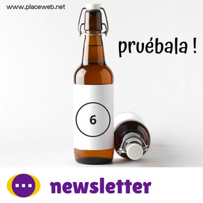 newsletter nº6
