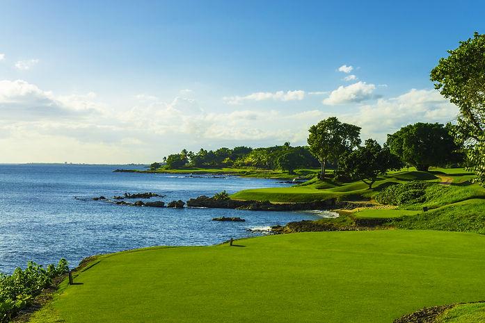 21_Golf_TOTDa.jpg