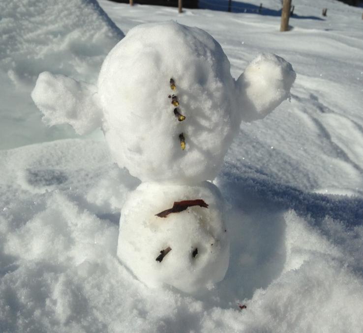 Schneeschuh Yoga