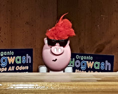 20190123_222418.jpg a cartoon pig thanking customers for using hogwash and announcing a free bottle coupon.