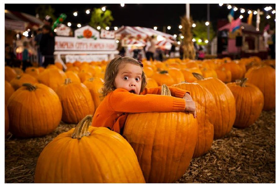 OCASA PTSA - Night at Pumpkin City's Pumpkin Farm