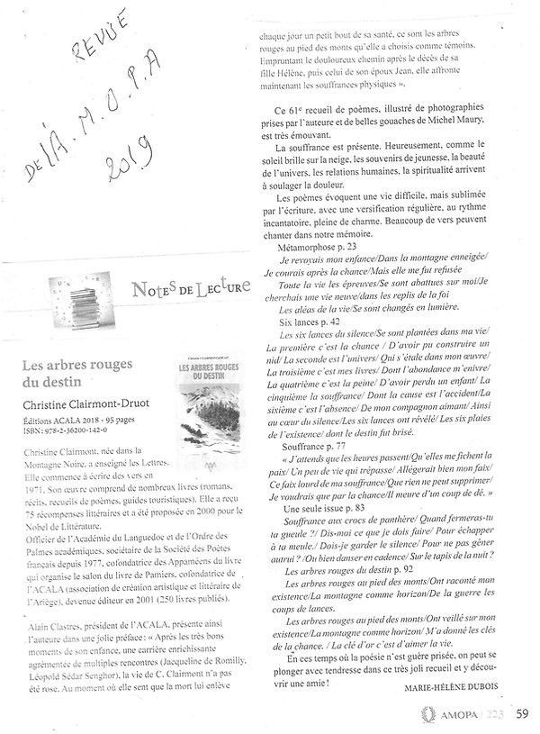 C 6.jpg
