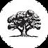 Fair Oak Farm Accommodation Oak Tree Log