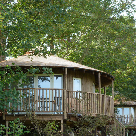 UK's Number One Tree House Stay