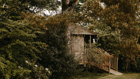 Our Award-Winning Tree Houses are 10 years old!