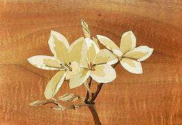 Plumeria Marquetry.jpg