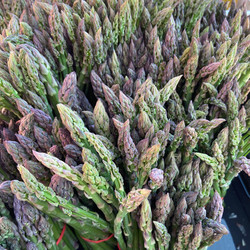Menomonie Farmer's Market