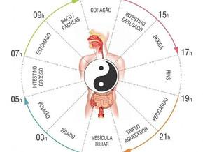 Relógio Biológico de acordo com a Medicina Tradicional Chinesa