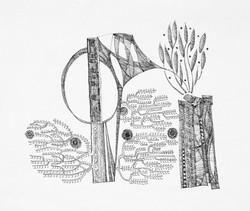 Organic--Plant Life(8 1/8x10 7/8)