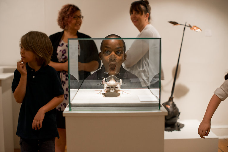 A young boy stares open-mouthed at a metal sculpture in wonder.