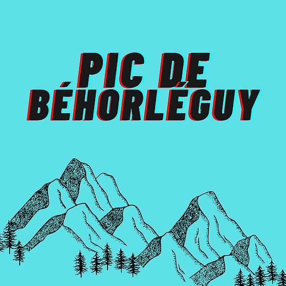 Prendre de la hauteur en Soule : Pic de Béhorléguy
