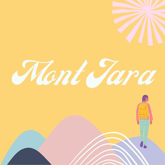 Mont Jara : Vue sur le bassin Baigorri-Garazi