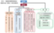 図3 看護部運営委員会構成図.png