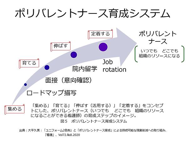 ⑩ポリバレントナース育成システム.PNG