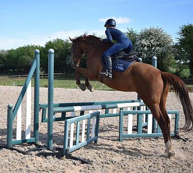 Meg jumping horse_edited.jpg