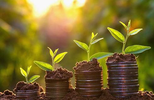 Economical sustainability 2 .jpg