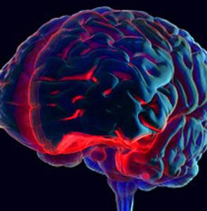 Brain Injury   Tiwald Law Firm   Albuquerque, New Mexico