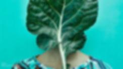 greenlaci2.jpg
