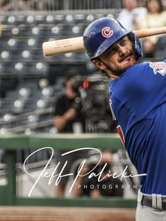 Jeff Palicki Photography MLB_8885.jpg