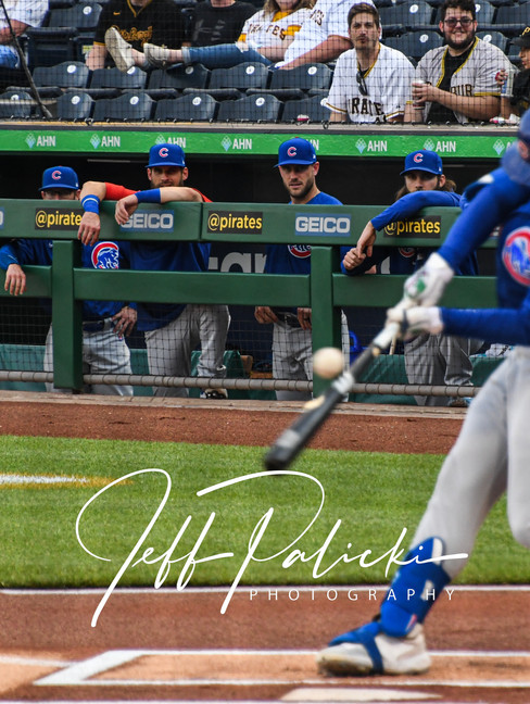 Jeff Palicki Photography MLB_8867.jpg