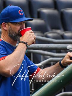 Jeff Palicki Photography MLB_8751.jpg
