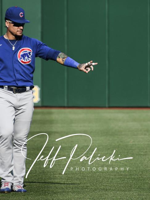 Jeff Palicki Photography MLB_8624.jpg