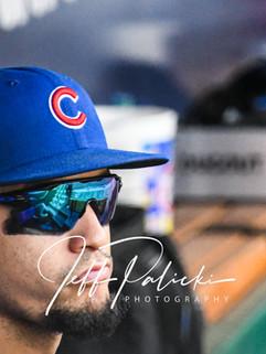 Jeff Palicki Photography MLB_8594.jpg