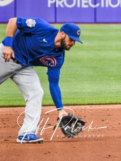 Jeff Palicki Photography MLB_9554.jpg