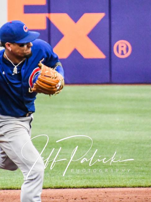 Jeff Palicki Photography MLB_9580.jpg